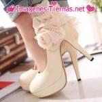 zapato con flor decorativa