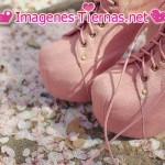 zapatos botas