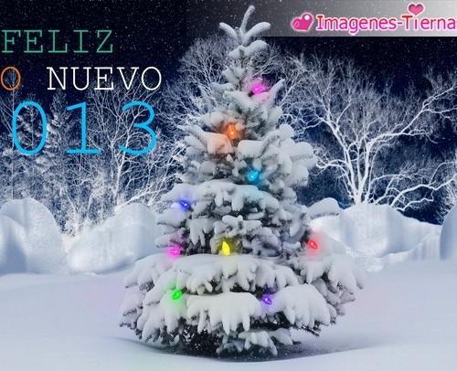 Las mejores imagenes de Feliz año nuevo 2013 - 23