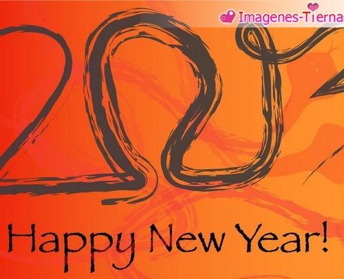 Las mejores imagenes de Feliz año nuevo 2013 - 40