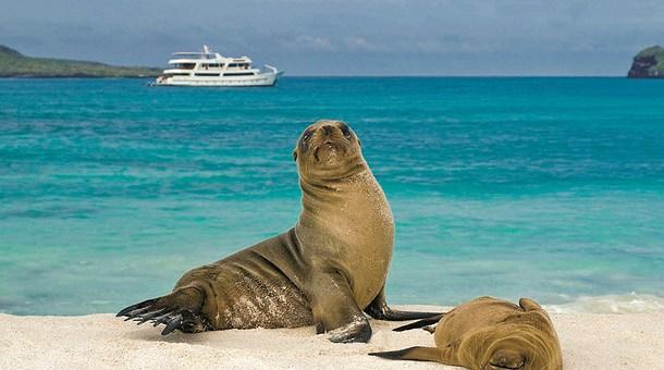 descansando-en-islas-galapagos