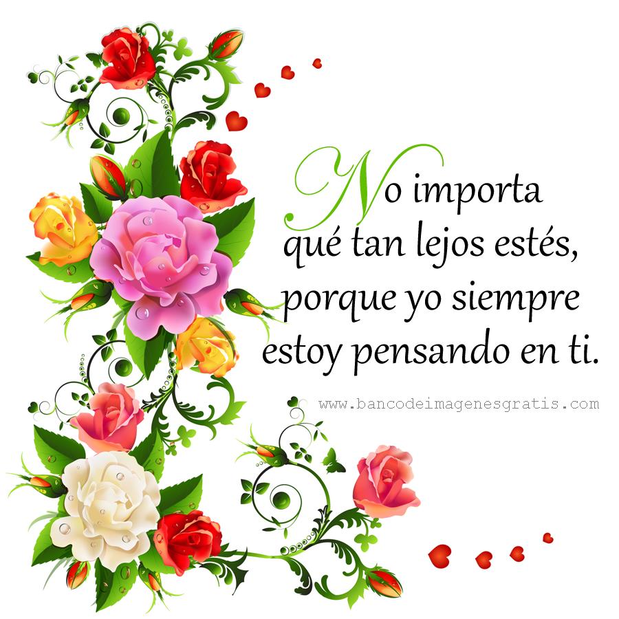 mensajes-de-amor-y-amistad-en-hermosa-postal-con-flores